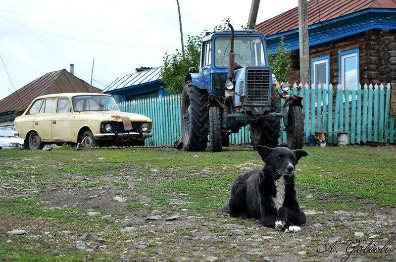 0 17dab9 23eb7401 XL - Менуэт Советскому трактору