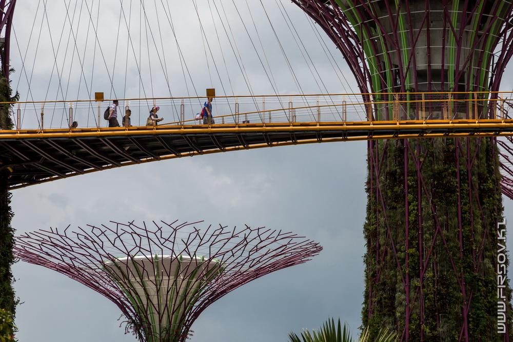 Singapore (99).jpg