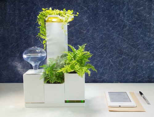 Модульный сад, цветник, огород для дома