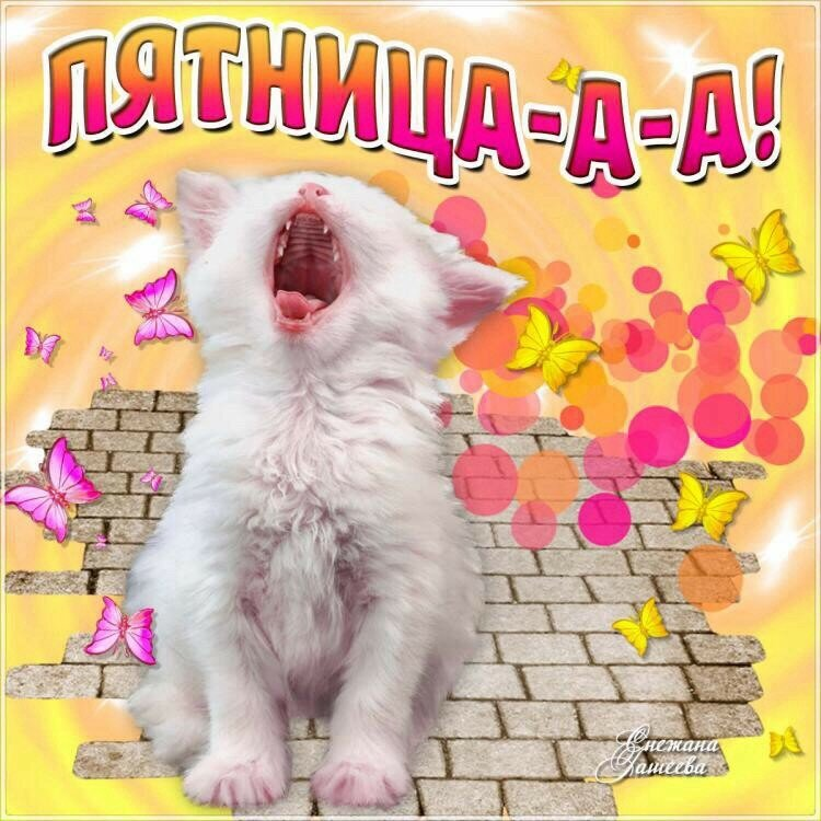 живая открытка про пятницу представляет