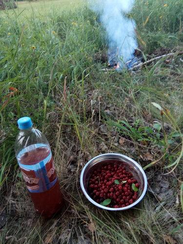 Улиткины в Магнолии - август 2017