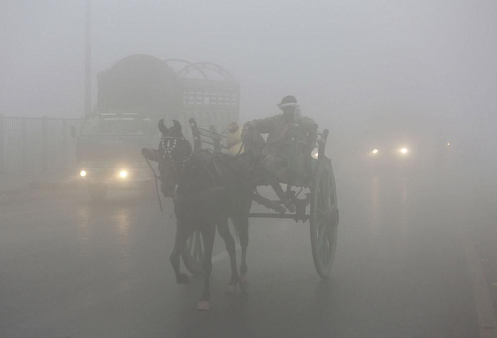 14. Нью-Дели, 20 октября 2017. (Фото Dominique Faget):