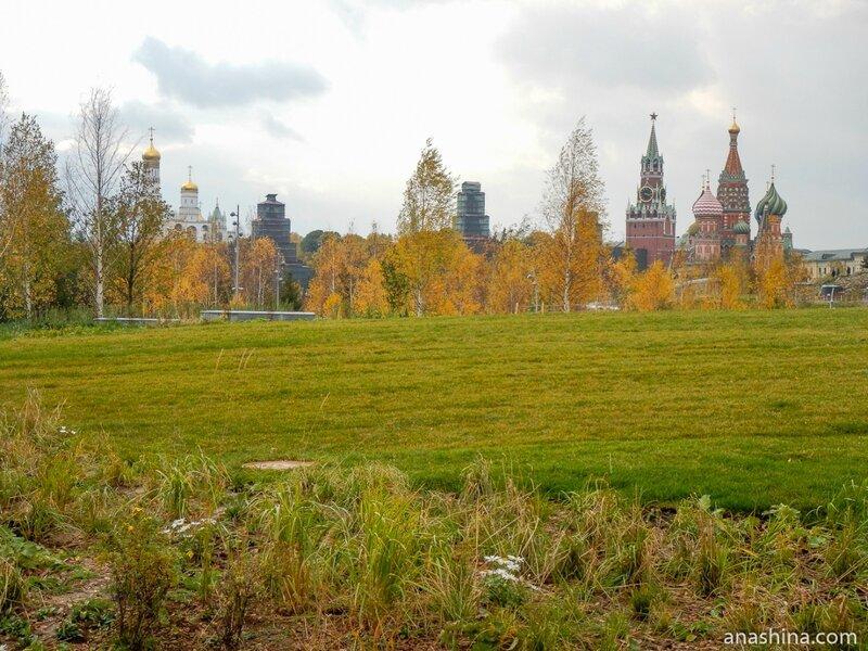 """Парковая ландшафтная зона «Суходольный луг», парк """"Зарядье"""", Москва"""