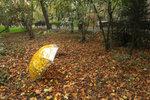 Варианты с зонтиком