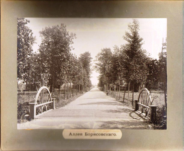 28. Аллея Борисовского