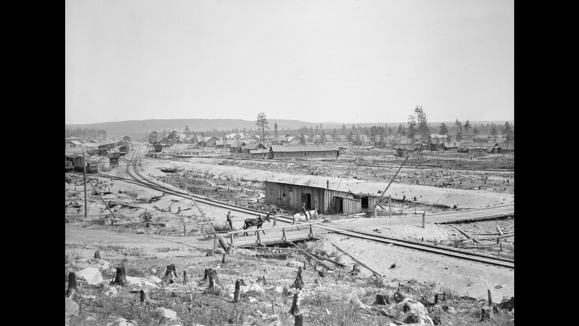 Вид Медвежьей Горы с севера, июль 1919