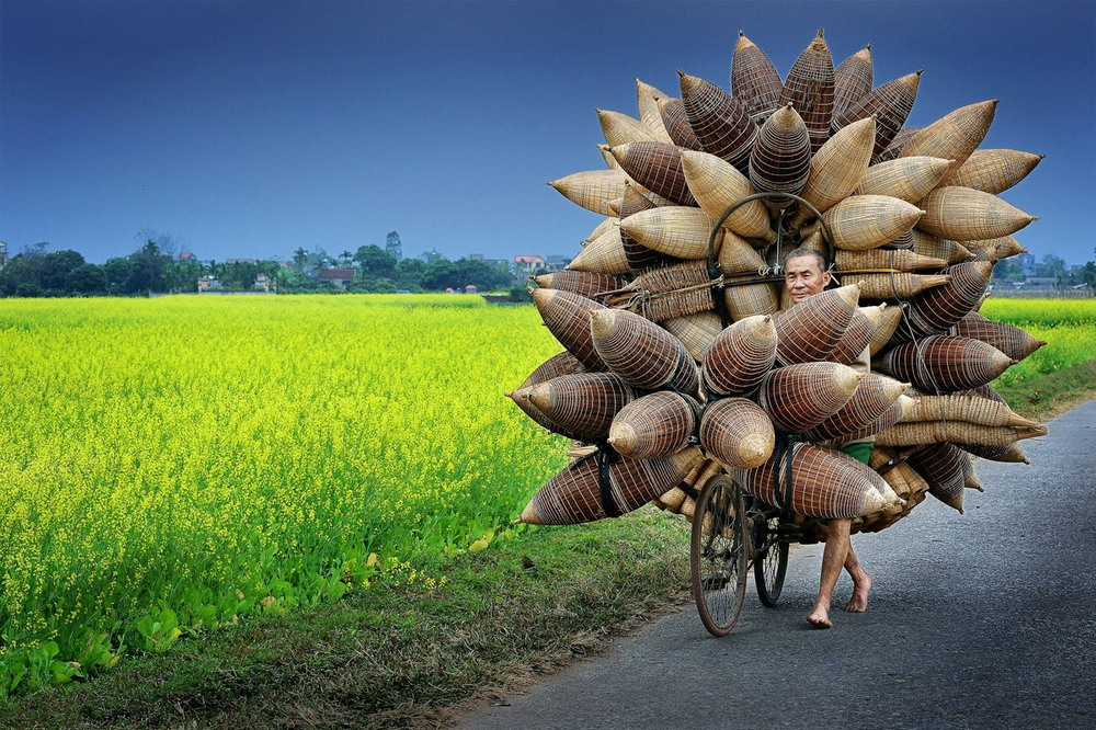 Восхитительные работы Ли Хоанг Лонга