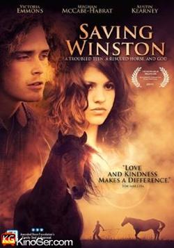 Das vergessene Pferd (2011)