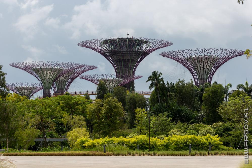 Singapore (95).jpg