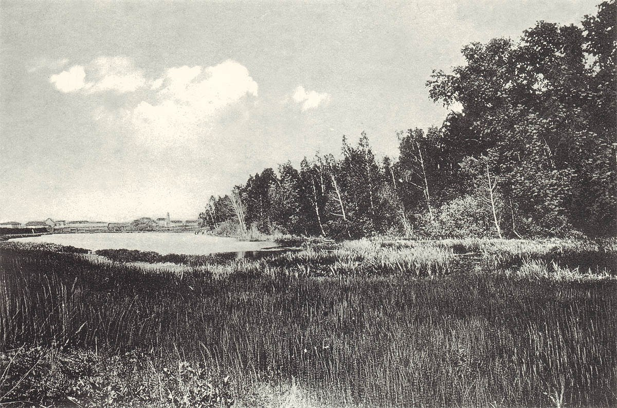 Университетское озеро