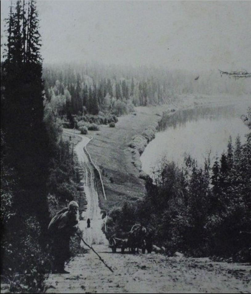 Окрестности Пинеги. Дорога вдоль реки Пинеги