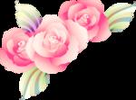 Beautiful Roses #7 (23).png