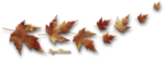2014-09-23-FEUILLE-AUTOMNE-.png