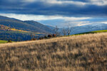 Пейзаж Тасмании