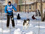 Собакины с видимым удовольствием отдавались бегу