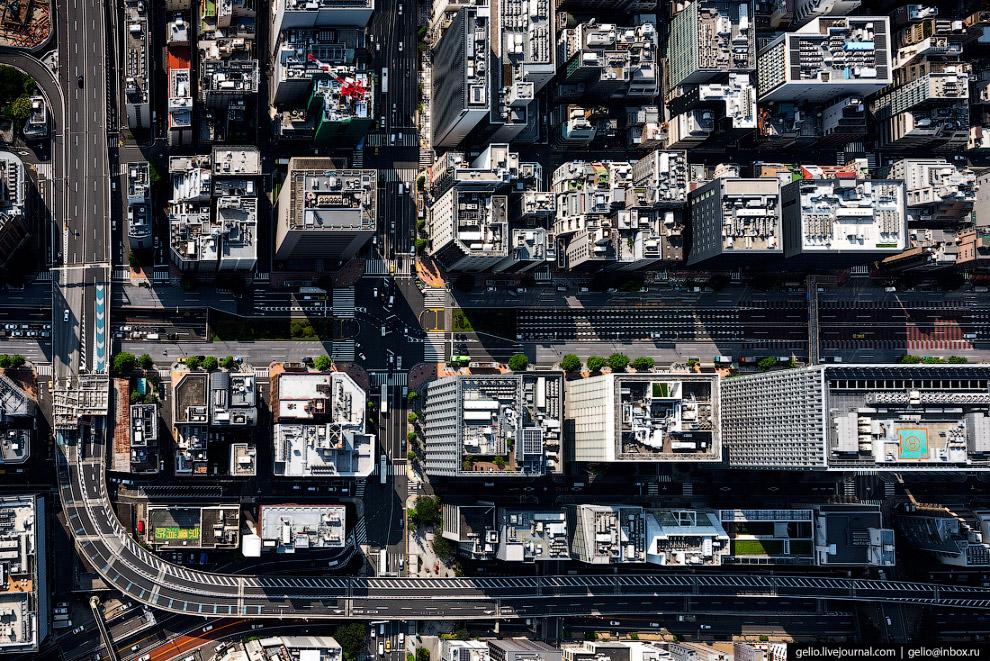 8. Перенаселенный Токио известен своими сверх-загруженными перекрёстками с «косыми» зебрами. Для бор