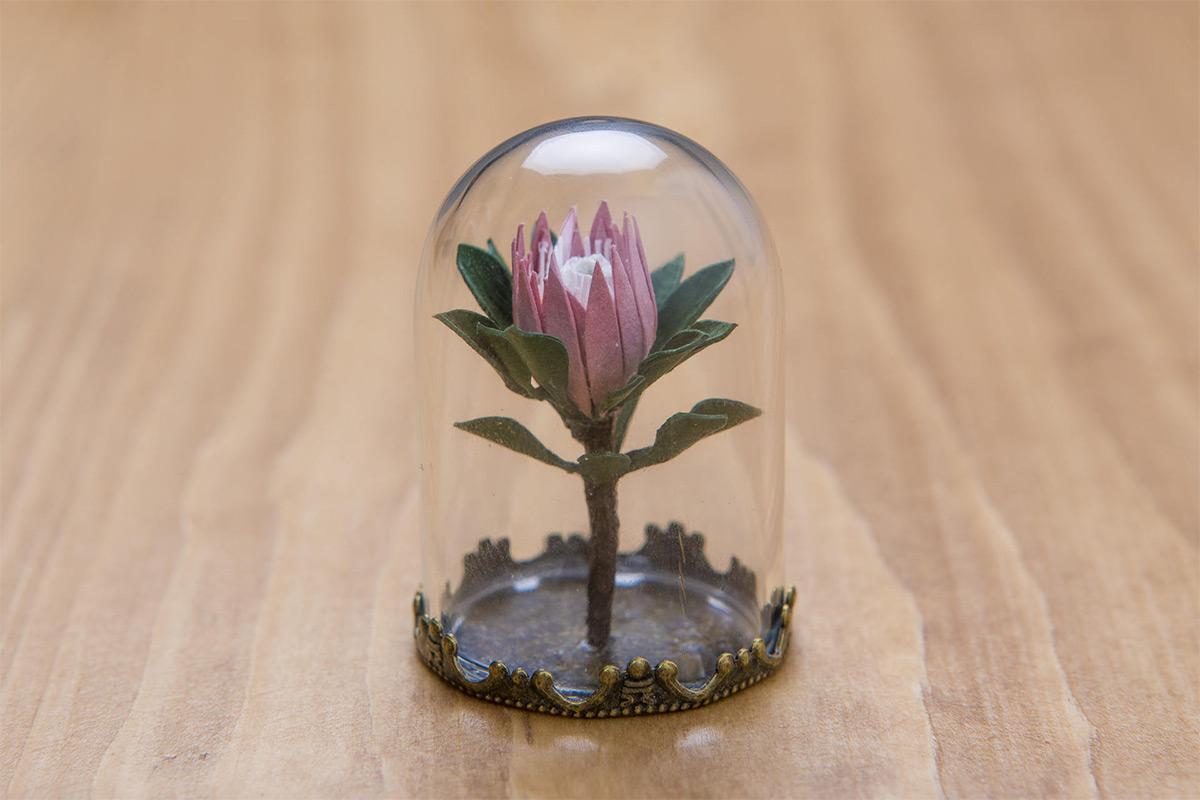 Miniature Paper Plants by Raya Sader Bujana