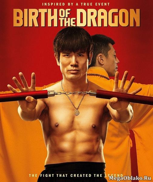 Брюс Ли: Рождение Дракона / Birth of the Dragon (2016/WEB-DL/WEB-DLRip)