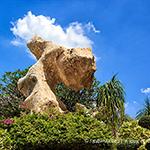 парк многолетних камней путешествие