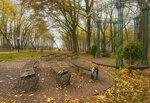 В осеннем парке городском вальсирует листва...