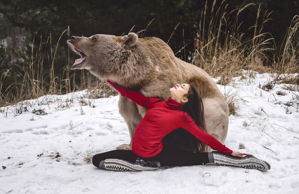 Гибкая Стефани и медведь Степан