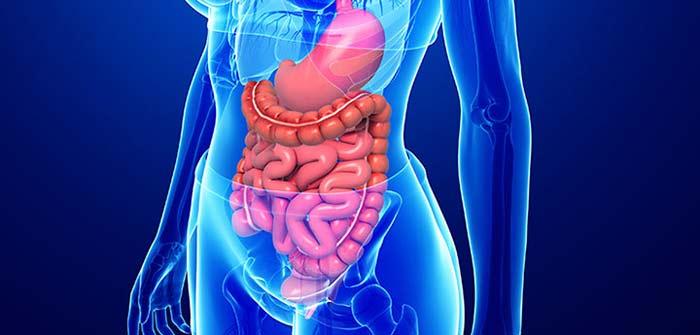 полипы в желудке симптомы и лечение