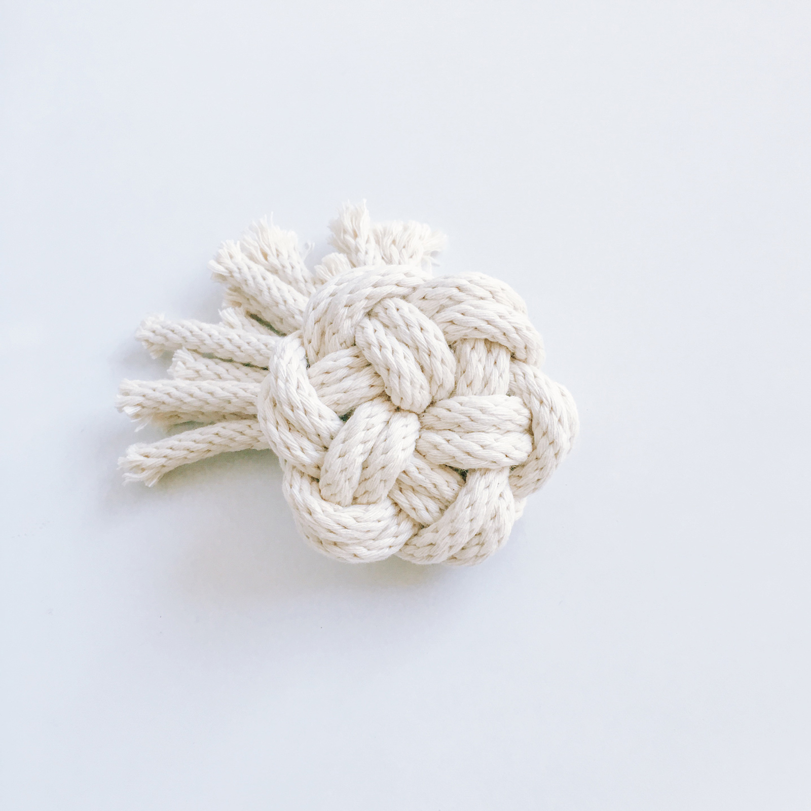 The Year of Knots by Windy Chien