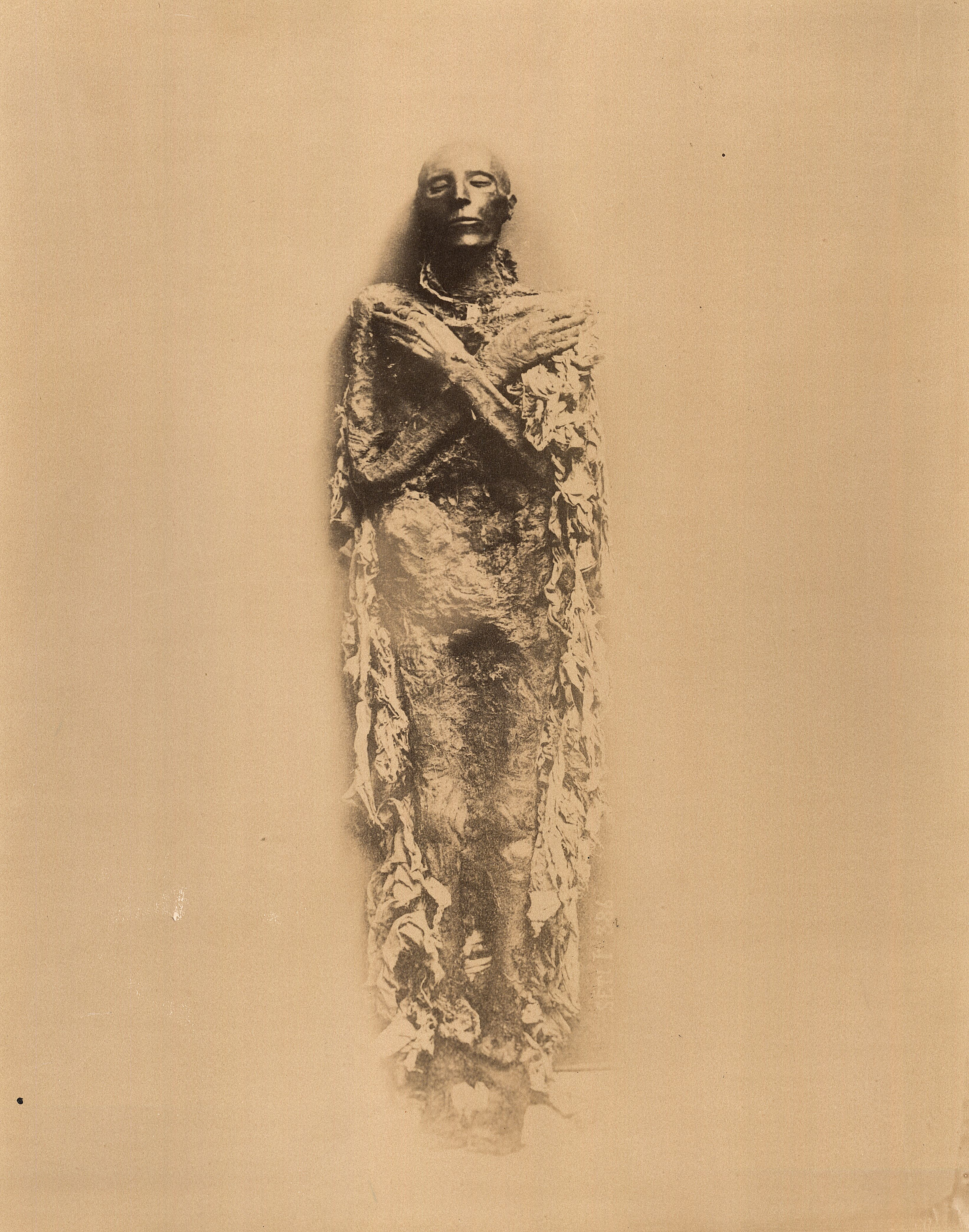 Каирский музей. Мумия фараона Сети I