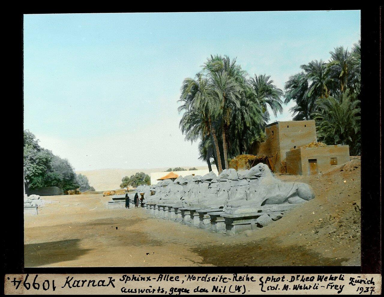 Аллея сфинксов, северная сторона напротив Нила