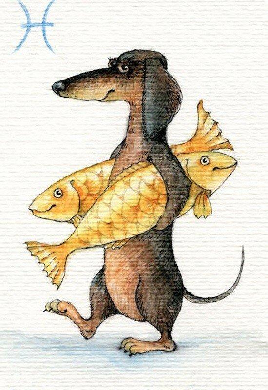 12-рыба.jpg