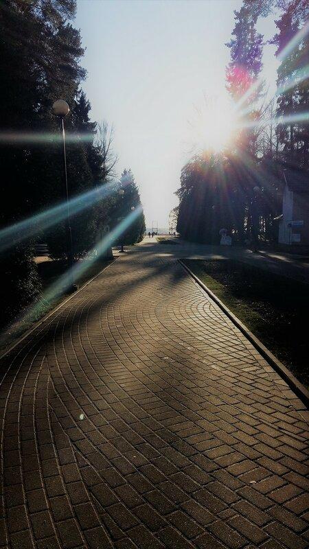 Солнечный ноябрь.
