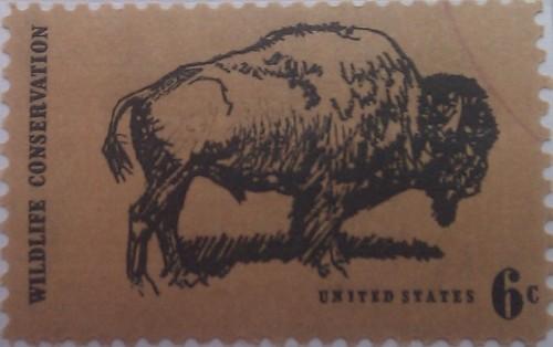 сша буйвол 6