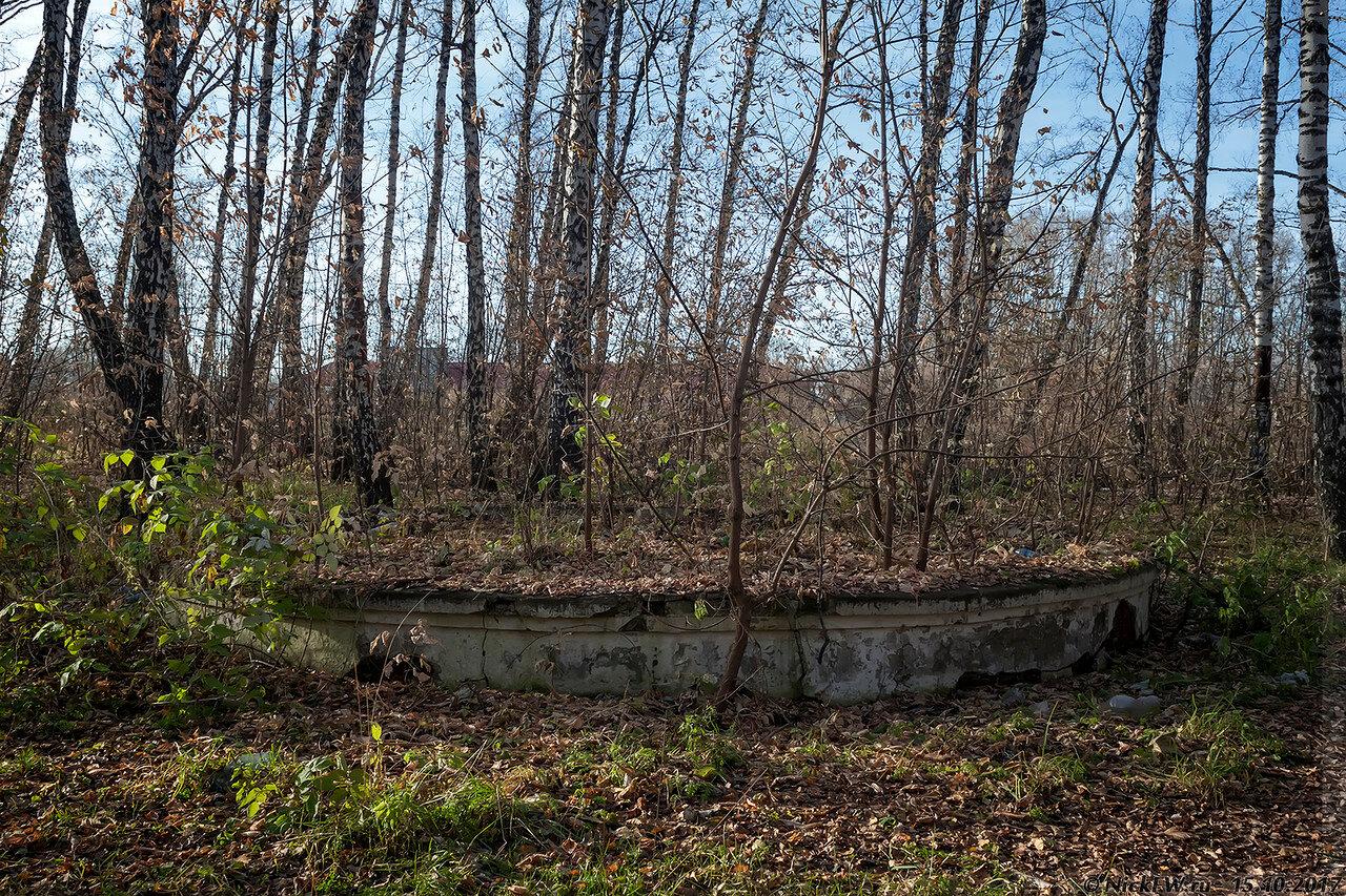 Видимо... бывшая клумба [© NickFW - 15.10.2017]