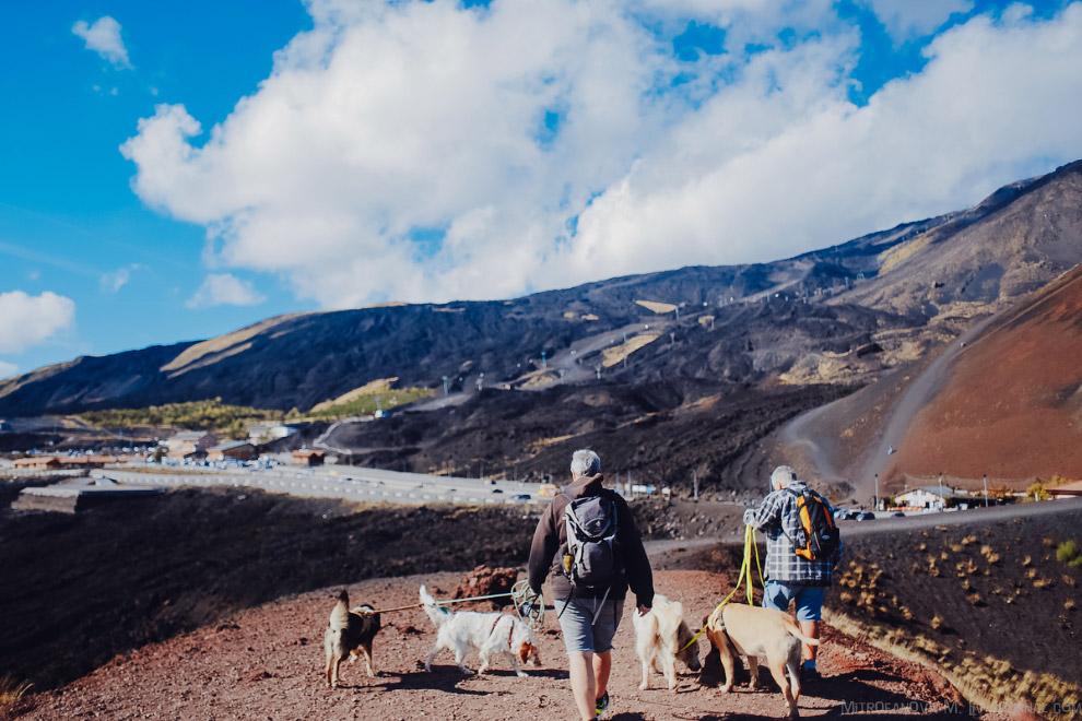 50. Этна находится на стыке двух тектонических плит: Африканской и Евразийской. В месте столкновения