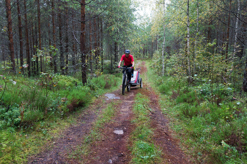 на велосипеде по лесу с велоприцепом Thule chariot cougar
