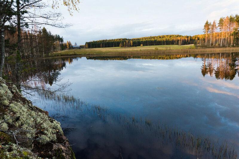 пейзаж на озере в финляндии в октябре, золотая осень
