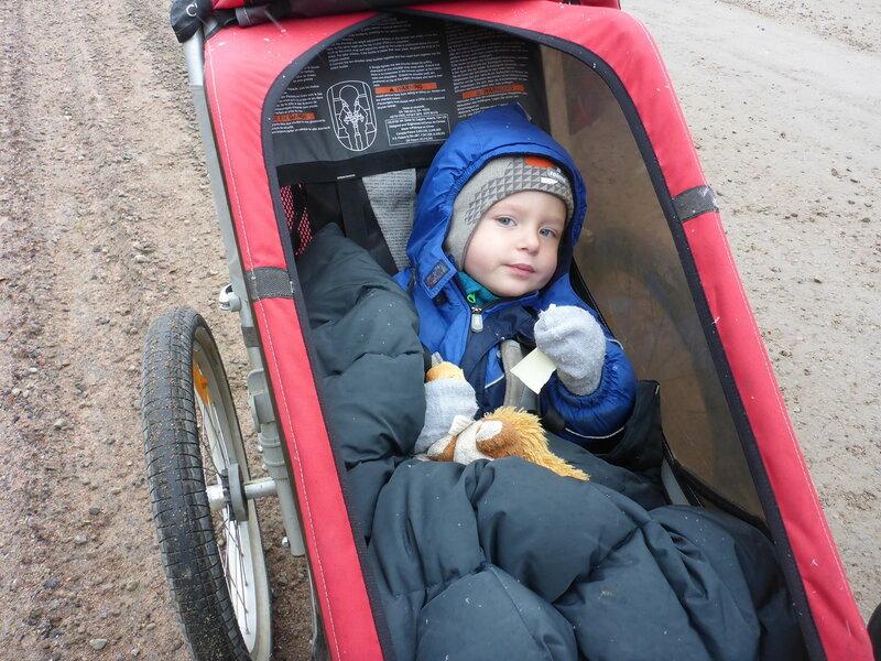 ребенок в велоприцепе Thule chariot cougar