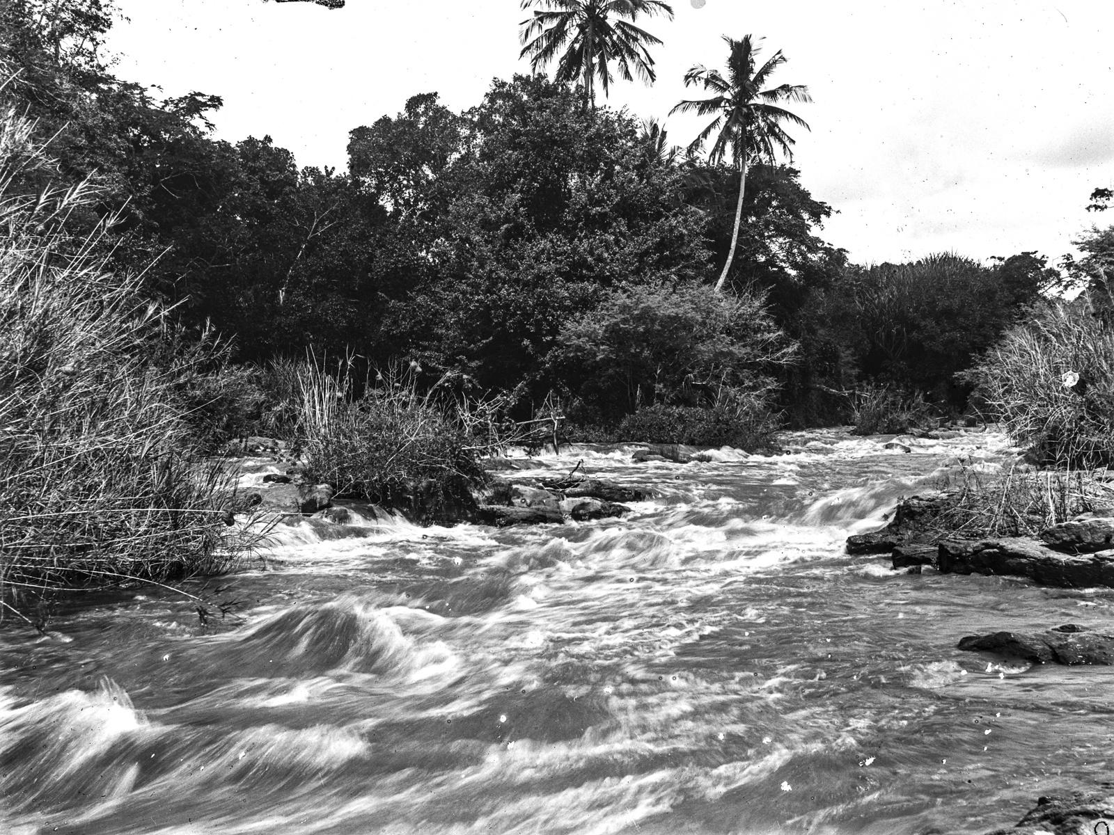 115. Река Руву
