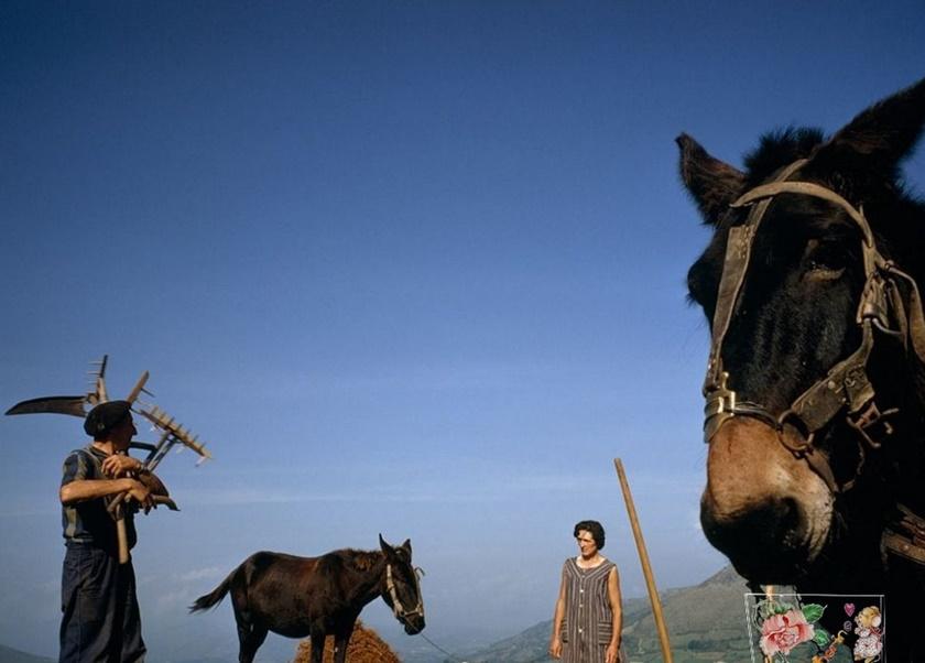Лучшие фото недели отNational Geographic 0 141bd6 6855c742 orig