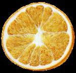 «Fruits_Village_by»  0_8a614_a79a2797_S