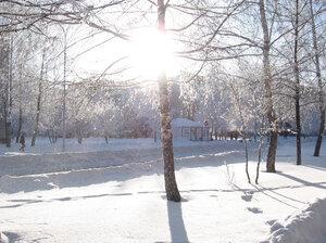 Мороз и солнце. Зимняя сказка.