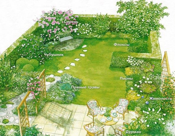 Оформление сада цветами с сильным