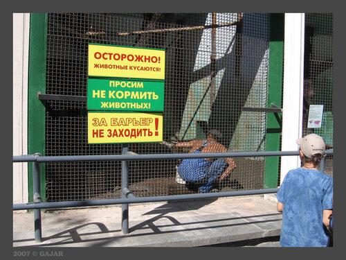 Самый страшный зверь )))
