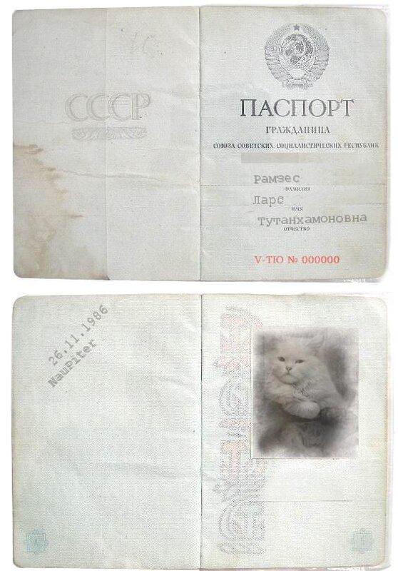 http://img-fotki.yandex.ru/get/9/klayly.15/0_39ccf_44ec3759_XL.jpg