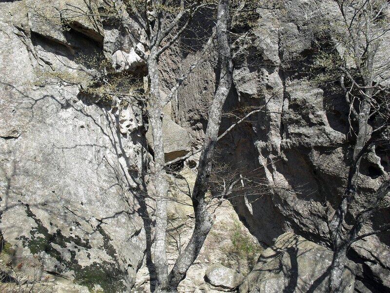 У стен каменных ... SDC15894