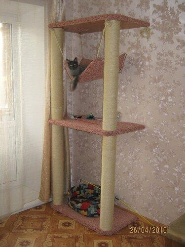 Как своими руками сделать домик когтеточку для кошки своими руками