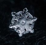 SnowFlake_6.jpg