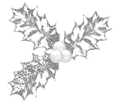 SAT_White Winter_Holly_Scrap and Tubes.png