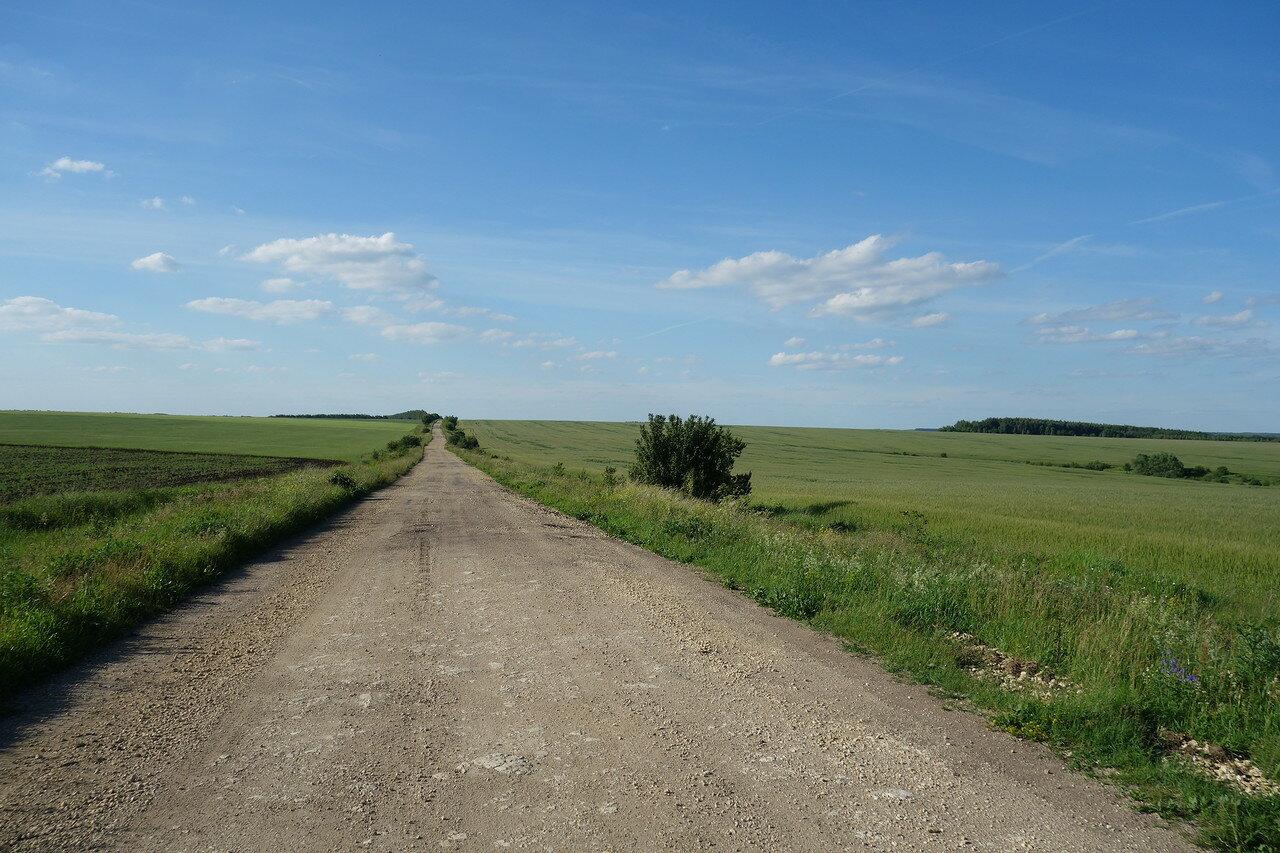 дорога в горизонт