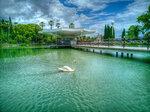 Лебединое озеро. Новый Афон